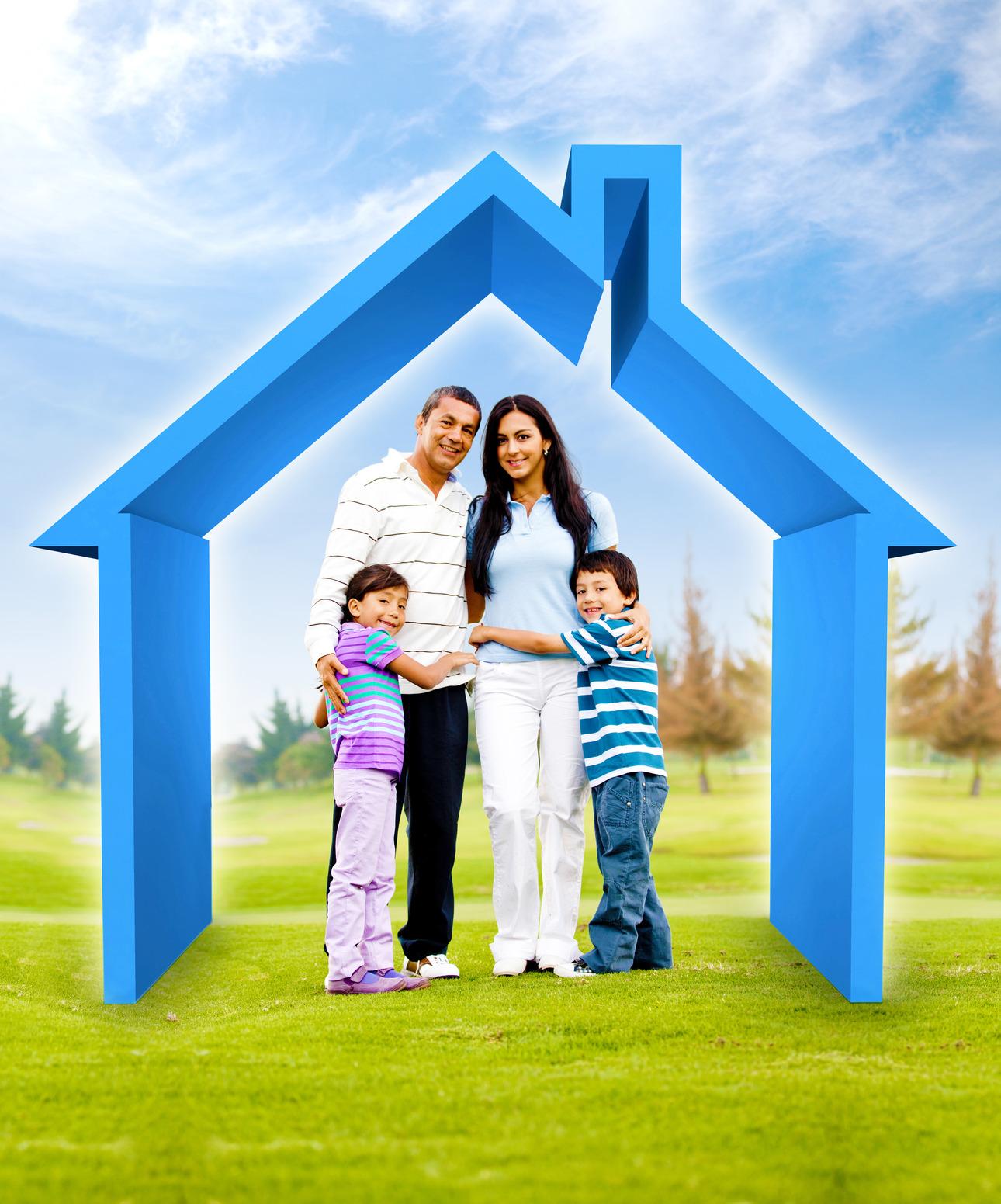 Domestic Insurance